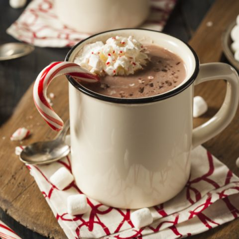 instant pot blender hot chocolate