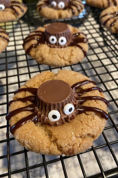 spider halloween treat
