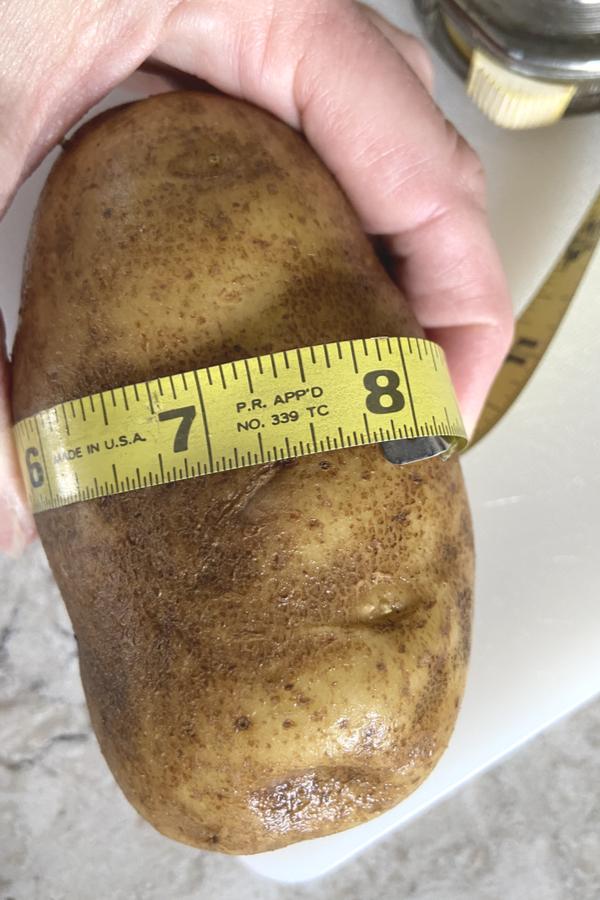 8 inch round potatoes